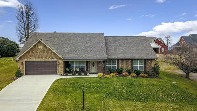Maryville Single Family Home For Sale: 819 Royal View Drive
