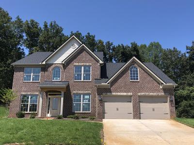 Knoxville Single Family Home For Sale: 12534 Cotton Blossom Lane