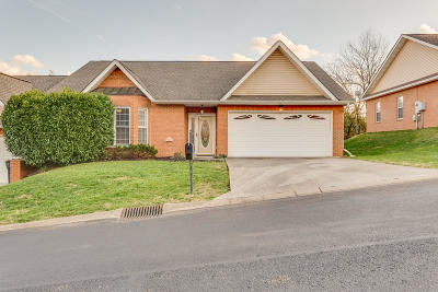 Knox County Single Family Home For Sale: 2416 Pine Marten Way