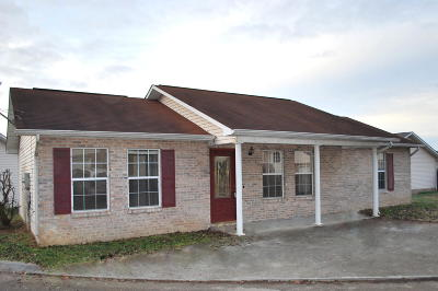 Sevierville Single Family Home For Sale: 1510 Country Place Way