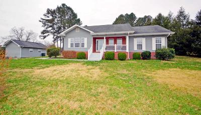 Sevierville Single Family Home For Sale: 237 E Hardin Lane
