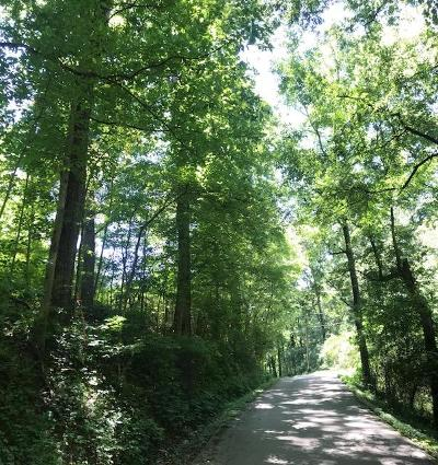 Knox County Residential Lots & Land For Sale: 13108 Lovelace Rd