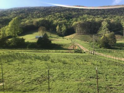 Anderson County, Campbell County, Claiborne County, Grainger County, Union County Residential Lots & Land For Sale: 1431 Avondale Springs