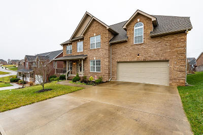 Knoxville Single Family Home For Sale: 8414 Mahogany Lane