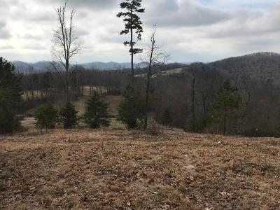 Anderson County, Campbell County, Claiborne County, Grainger County, Union County Residential Lots & Land For Sale: 240 Lakeridge Drive