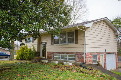 Knox County Single Family Home For Sale: 8705 Dolph Drive