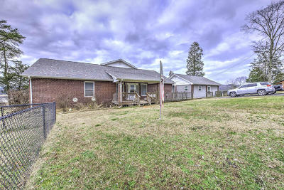 Anderson County, Campbell County, Claiborne County, Grainger County, Union County Single Family Home For Sale: 119 Chief Lane