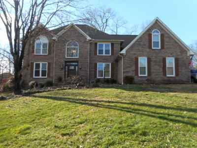 Knoxville Single Family Home For Sale: 217 Lawton Blvd