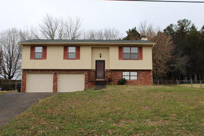 Knoxville Single Family Home For Sale: 1817 Wayside Rd
