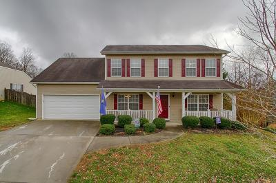 Knoxville Single Family Home For Sale: 2816 Ashridge Rd