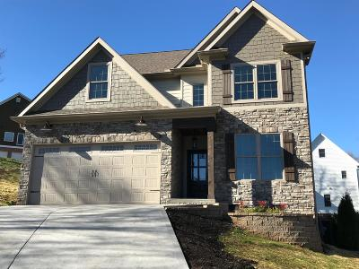 Knoxville Single Family Home For Sale: 6718 Fern Meadow Way