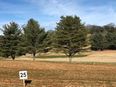 Anderson County, Campbell County, Claiborne County, Grainger County, Hancock County, Hawkins County, Jefferson County, Union County Residential Lots & Land For Sale: Lot 25-Fairview Drive