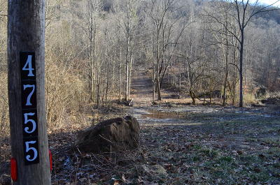 Anderson County, Campbell County, Claiborne County, Grainger County, Hancock County, Hawkins County, Jefferson County, Union County Residential Lots & Land For Sale: 4755 Snake Hollow Rd