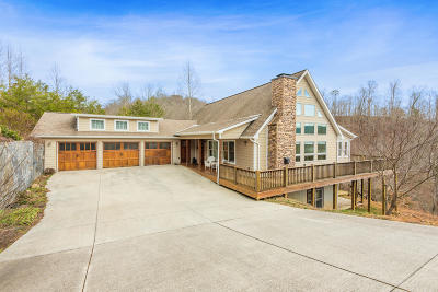 Anderson County, Campbell County, Claiborne County, Grainger County, Union County Single Family Home For Sale: 191 Clearwater Rd