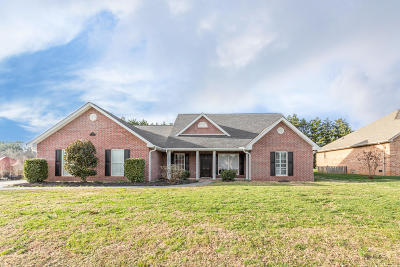 Knoxville Single Family Home For Sale: 3827 Gooseneck Drive