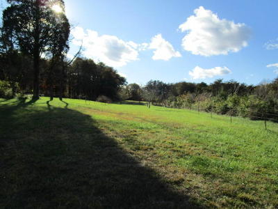 Anderson County, Campbell County, Claiborne County, Grainger County, Hancock County, Hawkins County, Jefferson County, Union County Residential Lots & Land For Sale: Little Valley