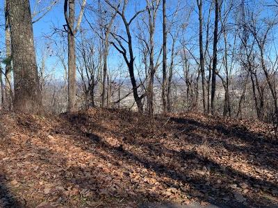 Pigeon Forge Residential Lots & Land For Sale: Lot 47 Twin City Way