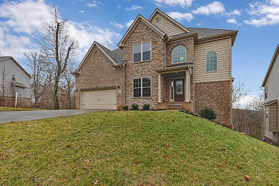Knoxville Single Family Home For Sale: 9960 Winding Hill Lane