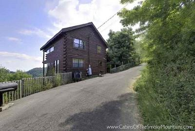 Sevierville Single Family Home For Sale: 2123 Windy Lane