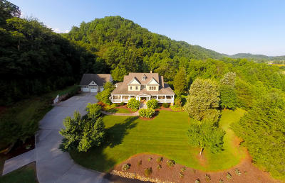 Single Family Home For Sale: 2734 McCammon Rd