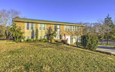 Maryville Single Family Home For Sale: 229 Candorra Cross Rd