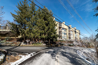 Gatlinburg Condo/Townhouse For Sale: 1130 Ski View Dive