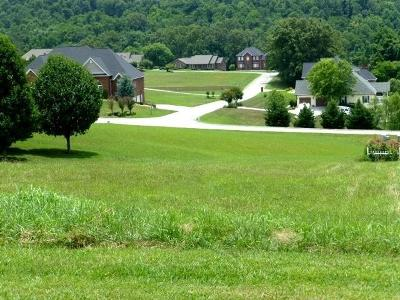 Jefferson City Residential Lots & Land For Sale: Lot 124r - 506 Providence Dr. Drive