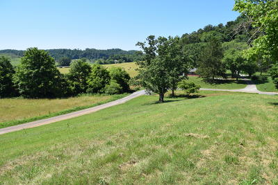 Rogersville Residential Lots & Land For Sale: 1.6 Ac Eidson Lane