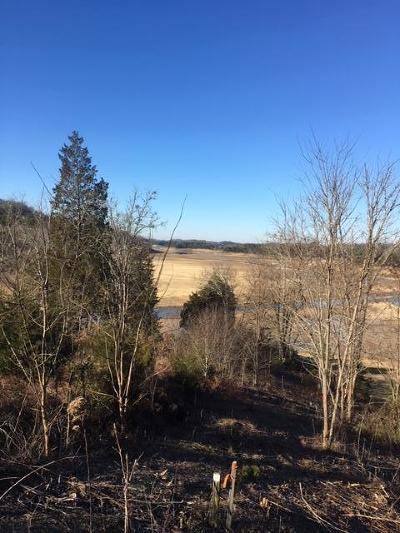 Sevier County Residential Lots & Land For Sale: Lot 48 Rocky Point Way