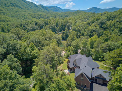 Sevierville Single Family Home For Sale: 419 Mountain View Rd