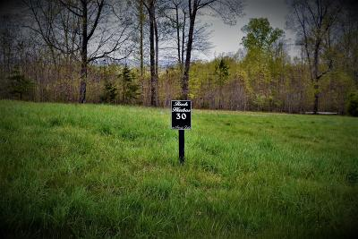 Residential Lots & Land For Sale: Lot # 30 Topaz Lane