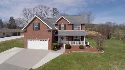 Sevier County Single Family Home For Sale: 355 Illinois Ave