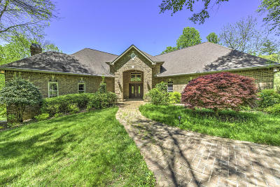 Anderson County Single Family Home For Sale: 113 Wiltshire Drive