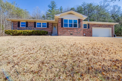Rocky Top Single Family Home For Sale: 330 Old Clear Branch Lane