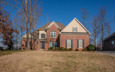Lenoir City Single Family Home For Sale: 729 Oak Chase Blvd