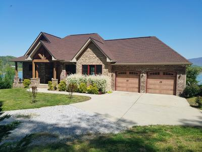 Dandridge Single Family Home For Sale: 2224 Ted Moore Rd