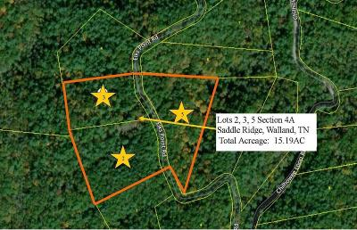 Residential Lots & Land For Sale: 2531 Elks Point Road