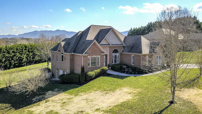 Maryville Single Family Home For Sale: 2423 Creekstone Circle