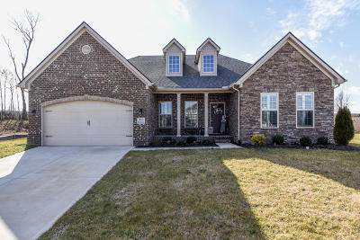 Maryville Single Family Home For Sale: 933 Brookwood Lane