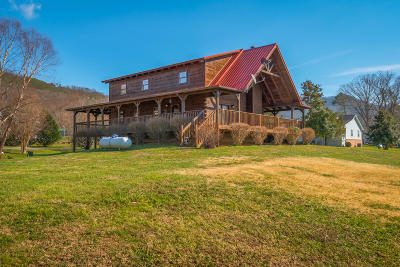 Sevierville Single Family Home For Sale: 3519 Autumn Woods Lane