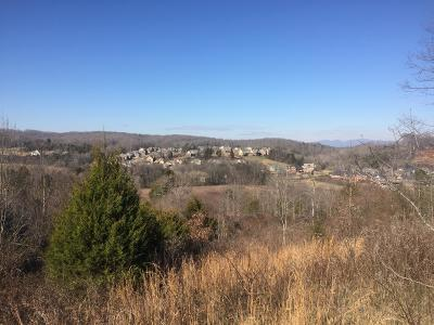 Knoxville Residential Lots & Land For Sale: 12140 Hardin Valley Rd