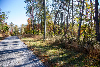 Seymour Residential Lots & Land For Sale: Lot 3 French Broad River Rd