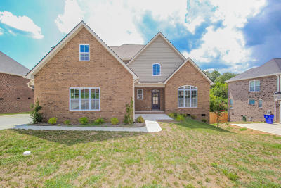 Knoxville Single Family Home For Sale: 1739 Apple Grove Lane