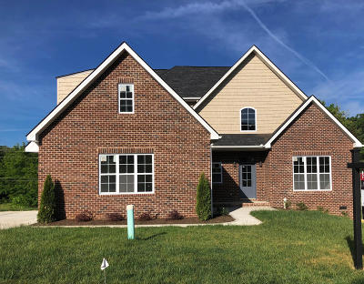 Knoxville Single Family Home For Sale: 1743 Apple Grove Lane