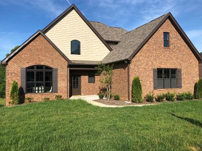 Knoxville Single Family Home For Sale: 1747 Apple Grove Lane