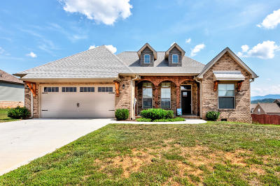 Sevier County Single Family Home For Sale: 2749 Vista Meadows Lane
