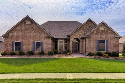 Lenoir City Single Family Home For Sale: 156 Millstone Lane