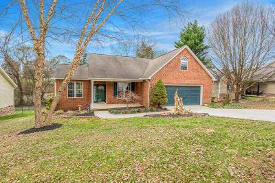 Anderson County Single Family Home For Sale: 138 Flag Stone Way