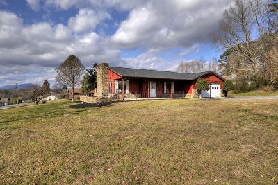 Sevier County Single Family Home For Sale: 1437 Denton Rd