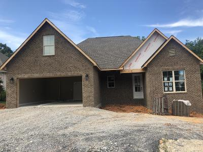 Loudon County Single Family Home For Sale: 330 Mingo Way